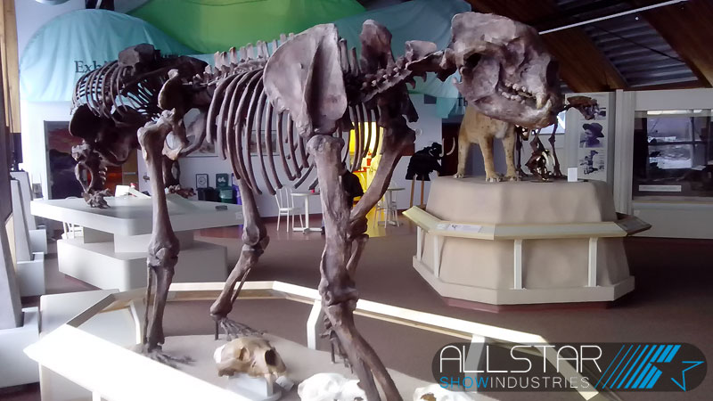 Giant short-faced bear, Yukon Beringia Interpretive Centre A/V & web streaming systems replacement.